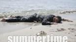 summertime2014
