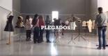 plegados2015